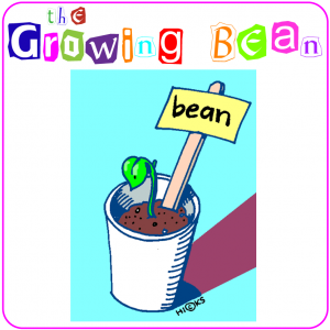 The Growing Bean