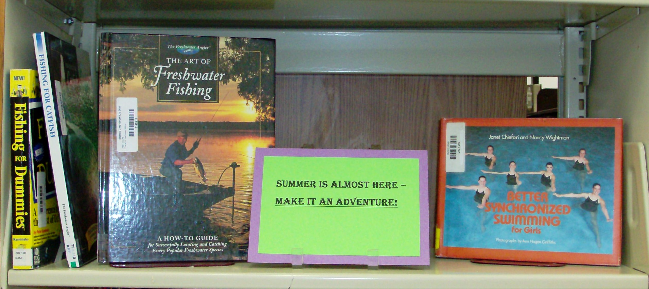 Summer books display close-up