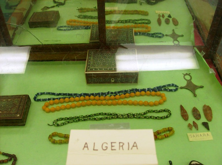 Display box of Alegerian artifacts