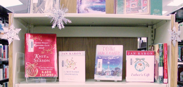 Bookcase display 12-9-10