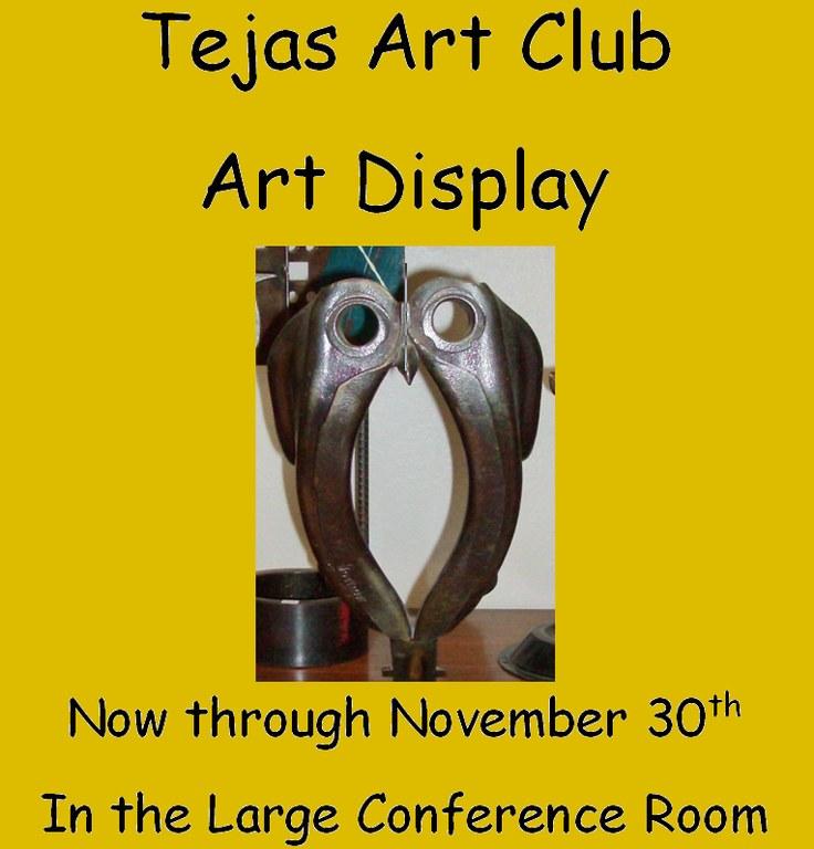 Tejas art display