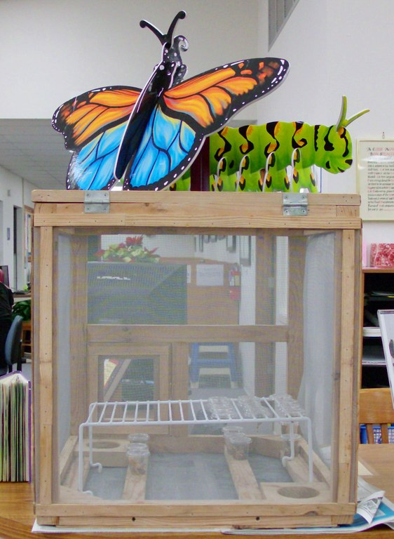 Butterfly Cage