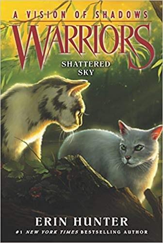 Warriors A Vision of Shadows.jpg
